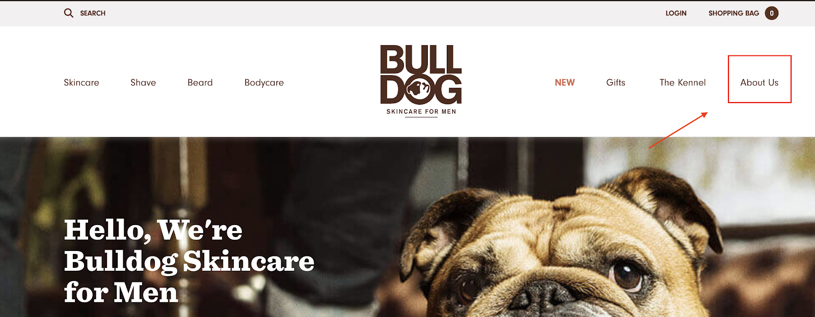 Bulldog Skincare about page